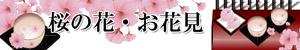 春・桜と花見